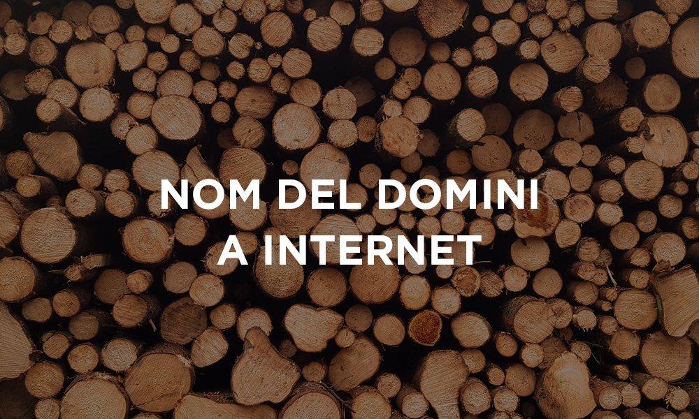 Nom de domini a Internet